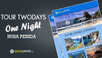 tour nusa penida 2day 1night