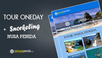 Tour Oneday Snorkeling
